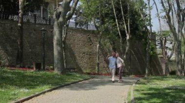 Senior couple walking in the park — Stock Video