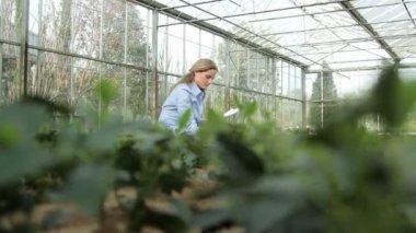 Scientist examining flora — Stock Video