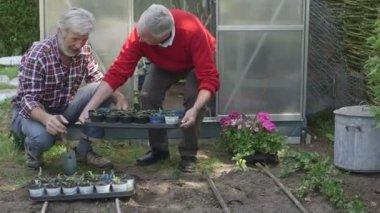 Men working in domestic garden — Stock Video