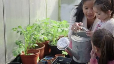 Mother teaching children planting — Stock Video