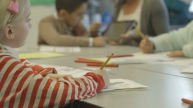 Young schoolchild in classroom — Stock Video