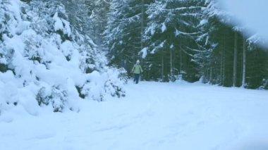 Couple walking through snow — Stock Video