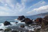 View of the Canical, Madeira, Portugal, Europe — Stockfoto