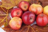 Apple, Apples, Fruits — Stockfoto