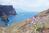 The trail to the Cape of Ponta de Sao Lourenco, Madeira, Portugal, Europe — Stock Photo