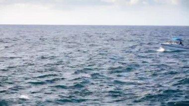 Rybářská loď na obzoru v dálce — Stock video