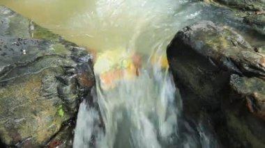 Mountain stream — Stock Video