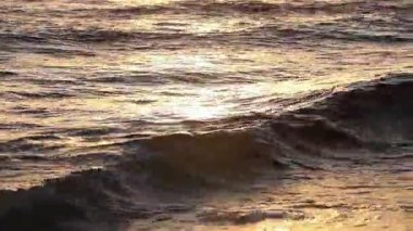 Golden colors on the waves. Sunrise. Ocean. — Stock Video