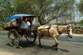 Carriage in Myanmar. — Stock Photo