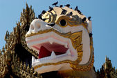 Face of Singha is white lion guardians in temple,Myanmar. — Stock Photo