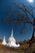Nya vita pagoder i antika tempel, Myanmar. — Stockfoto