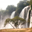 Ban Gioc waterfall in Vietnam. — Stock Photo #60446115