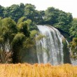 Straw in rice field front of Ban Gioc waterfall in Vietnam. — Stock Photo #60449019