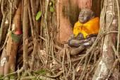 Old root tree around monk statue in Thai church. — Stock Photo