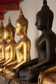 Group of Buddhas in the wall at church . — Stock Photo