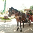 Horse carriage in Lampang city, Northern of Thailand. — Stock Photo #63935351