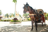 Horse carriage in Lampang city, Northern of Thailand. — Stock Photo