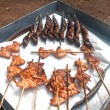 Grilled fish and roast chicken on tray. — Stock Photo #72832311