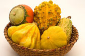 Decorative pumpkins in wicker basket — Stock Photo