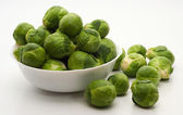 Brussels sprouts cabbage — Stock Photo