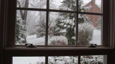 Wintery Snow Fall — Stock Video