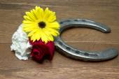 Horseshoe on Wood with Three Flowers of the Triple Crown — Stock Photo