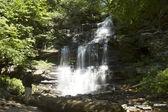 Ganoga Falls, Ricketts Glen Park stanowy z wycieczkowicz — Zdjęcie stockowe