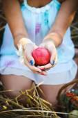 Apple in hands — Stock Photo