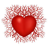 Valentines Day Heart symbol with vasculars — Wektor stockowy
