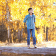Autumn day, happy boy walking in the park — Stock Photo #53726519