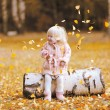 Autumn lifestyle photo child throws up the leaves and having fun — Stock Photo #53726525