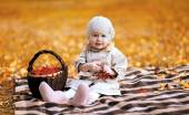 Autumn portrait child and basket with rowan berry  — Stock Photo