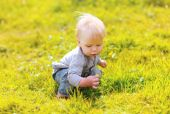 Cute baby in sunny summer meadow — Stock Photo