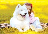 Autumn photo dog and child having fun outdoors — Stock Photo