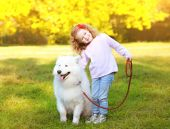 Positive little girl and dog having fun outdoors in the park — Stock Photo