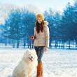 Woman owner walking with white Samoyed dog in winter day — Stock Photo #72357539