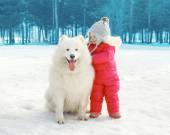 Portrait of happy child with white Samoyed dog in winter day — Stock Photo