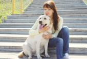 Happy labrador retriever dog and owner woman together resting in — Stock Photo