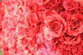 Pink plastic rose — Zdjęcie stockowe