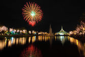Fireworks at the lake — Stock Photo