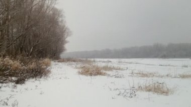 Falling snow on riverside — Stock Video