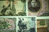 Banknotes of North Korea. — Stock Photo