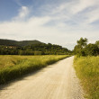 Pathway in tuscany countryside — Stock Photo #51930195