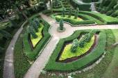 A ring field with figured trees in the Nong Nooch tropical botanic garden near Pattaya city in Thailand — Stock Photo