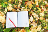 Pen sitting on the notebook with  autumn leaves — Stock Photo