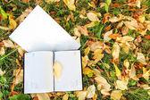 Notebook  on autumn leafs — Stock Photo