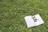 Book, strawberries and clock lying on a  green forest lawn — Stock Photo