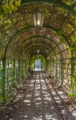 Arch In The Park — Stock Photo