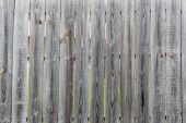 Пережитые деревянные доски — Стоковое фото