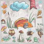 Autumn collection with images of birds, animals, fungi, flowers, cones for children. Set 2. — 图库矢量图片